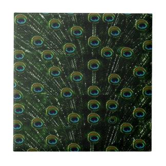 Reizender schwarzer Pfau Kleine Quadratische Fliese