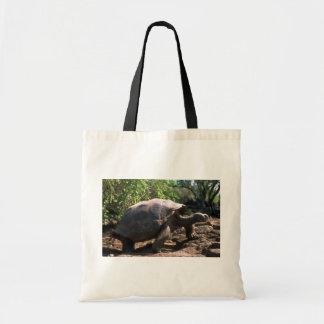 Riesige Schildkröte Galapagos (kuppelförmige Art) Budget Stoffbeutel