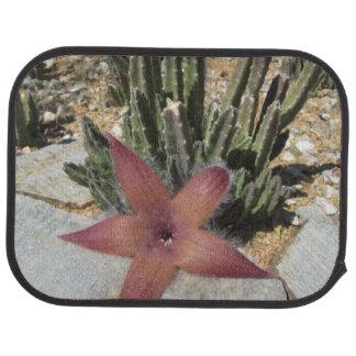 Riesiger Starfish-Kaktus Autofußmatte