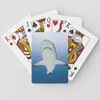 Riff-Haifisch-Spielkarten Spielkarten