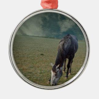 Roan Pferd, das in der Koppel weiden lässt Rundes Silberfarbenes Ornament