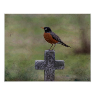 Robin auf einem Kreuz Poster