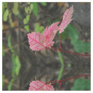 "Rosa-Blätter Fall gekämmten Baumwollgewebees 56"" Stoff"
