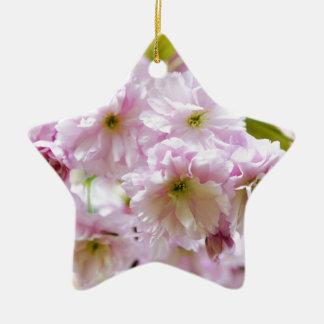 Rosa Blumen auf japanischem Kirschbaum in der Keramik Stern-Ornament