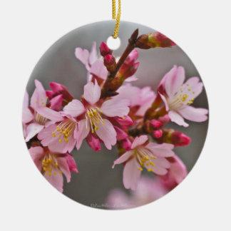 Rosa gegen grauer Himmel-japanische Kirschblüten Rundes Keramik Ornament