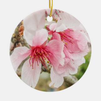 Rosa Kirschblüten - Keramik Ornament