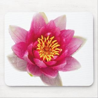 Rosa Lilien Mousepads