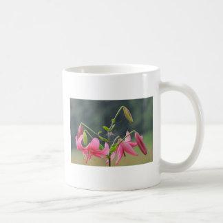 Rosa lilly tasse