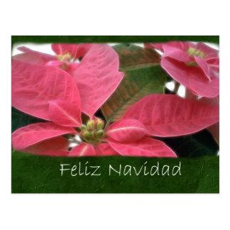 Rosa Poinsettias 3 - Feliz Navidad Postkarte