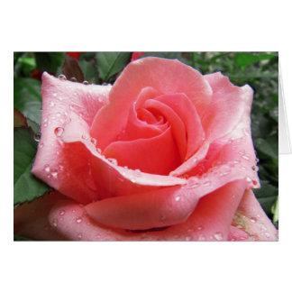 Rosa Rose mit Tau-Anmerkungs-Karte Karte