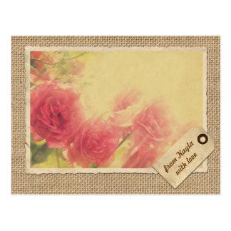 Rosa Rosen-Sunlit Nachmittags-Vintage Postkarte