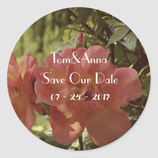 Rosa Rosenphotographie Save the Date Aufkleber