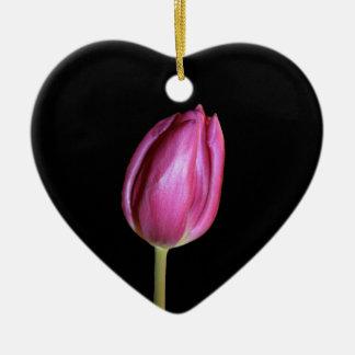Rosa Tulpe-leere Hintergrund-Blumen-BlumenFotos Keramik Ornament