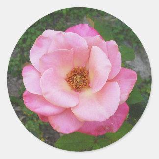 Rosen-Aufkleber 002
