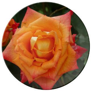 Rosen-Blumen-Foto-dekorative Porzellan-Platte Teller Aus Porzellan