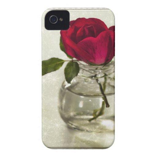 Rosen sind rot iPhone 4 hüllen