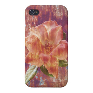Rostige Rose iPhone 4/4S Cover