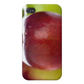Rot iPhone 4 Etui