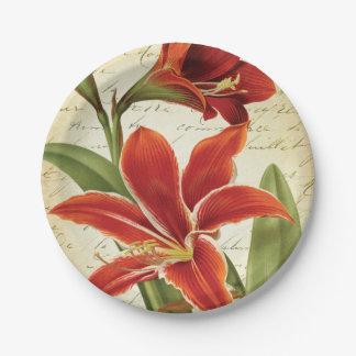 Rote Amaryllis-WeihnachtsBlume botanisch Pappteller