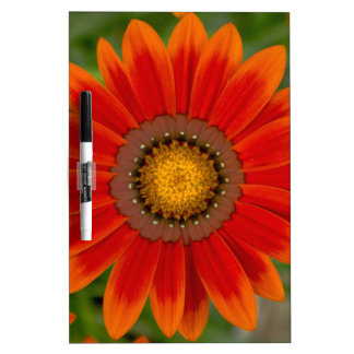 Rote Blume Memoboard