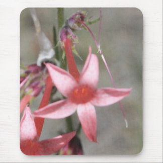 Rote Blume Mousepad