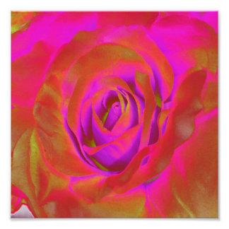 Rote Blumen-blühende Birnen-Entwürfe Kunst Fotos