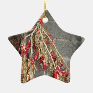 Rote Chili-Paprikaschoten, die hängen, um auf Keramik Ornament