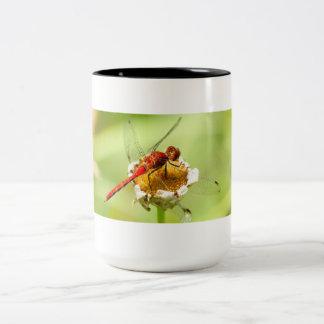 Rote Drache-Fliegen-Tasse Zweifarbige Tasse