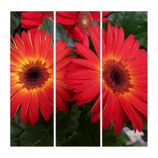 Rote Gerbera-Gänseblümchen Triptychon