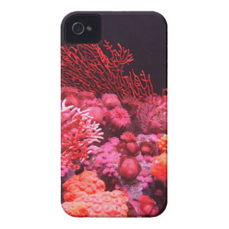 Rote Koralle iPhone 4 Cover