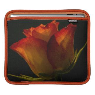 Rote orange und gelbe Rose iPad Sleeve