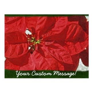 Rote Poinsettias 3 Postkarte