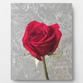 Rote Rose Fotoplatte