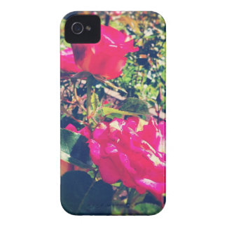 Rote Rose Case-Mate iPhone 4 Hülle