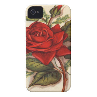 Rote Rose iPhone 4 Case-Mate Hülle