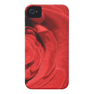 Rote Rose iPhone 4 Cover
