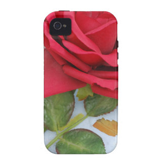 Rote Rose mf Vibe iPhone 4 Case