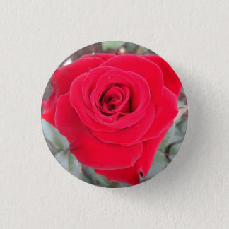 Rote Rose Runder Button 2,5 Cm