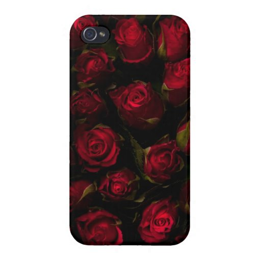 Rote Rosen iPhone 4 Etui