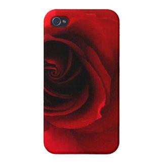 Rote Rote Rose Etui Fürs iPhone 4