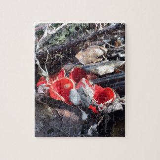 Rote Schalen und Blätter Jigsaw Puzzles