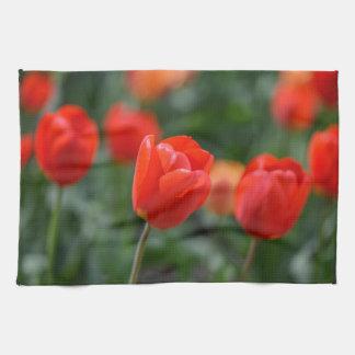 Rote Tulpen im Garten Geschirrtuch