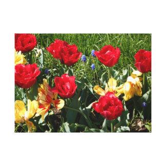 Rote und gelbe Tulpen Leinwanddruck
