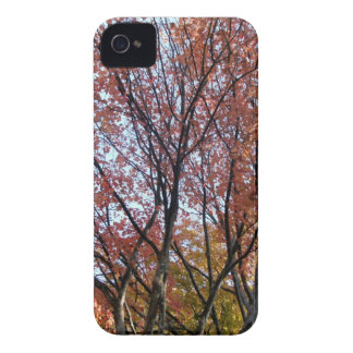 Roter Baum iPhone 4 Case-Mate Hülle