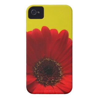Roter Gerbera iPhone 4 Hüllen