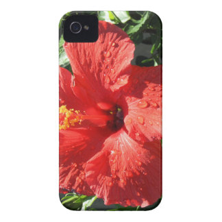 roter Hibiskus iPhone 4 Case-Mate Hülle