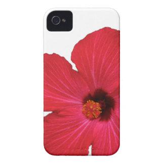 Roter Hibiskus iPhone Kasten iPhone 4 Cover
