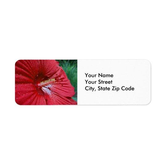 Roter Hibiskus mit Rückversand-Adressaufkleber