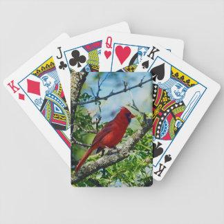Roter Kardinals-wilder Vogel Pokerkarten