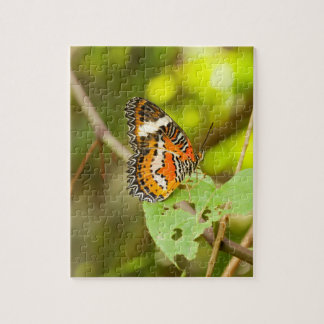Roter Lacewingschmetterling, Cethosia biblis Puzzle